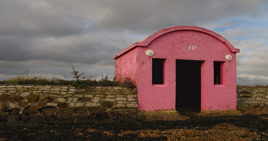 image of a Pink Building